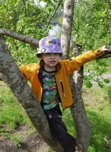 Förskolan Giraffen Norsesund trädklättring